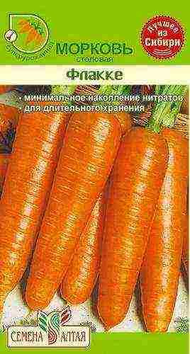 Два вопроса о моркови? - сад, огород - страна мам