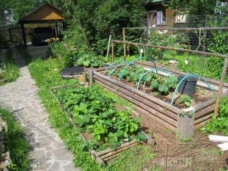 Теплая грядка своими руками весной для огурцов из спанбонда - то, что нужно для хорошего урожая огурцов даже в самое холодное лето. | красивый дом и сад