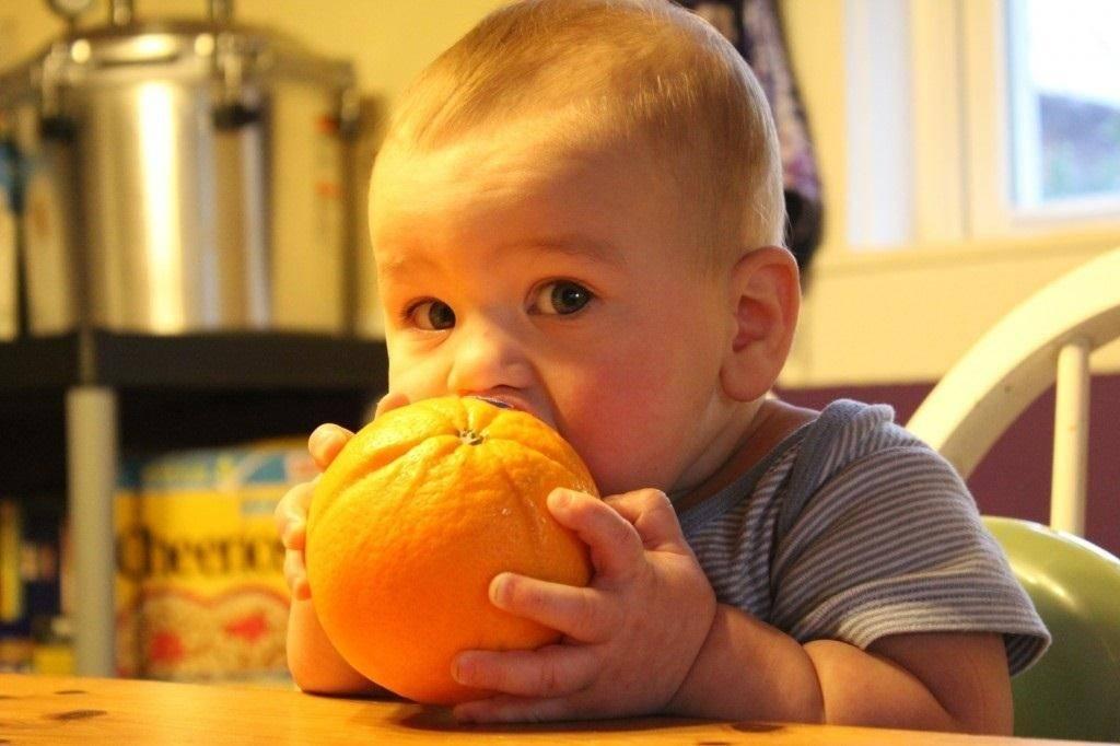 Диета при дерматите | меню и рецепты диеты при дерматите | компетентно о здоровье на ilive