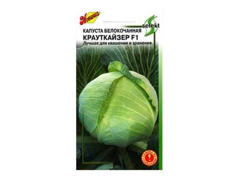Описание сорта капусты крауткайзер f1 - дневник садовода amparagroup.ru