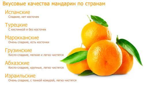 """Мандарины: чем полезны """"новогодние"""" цитрусы и кому их нельзя есть  :: инфониак"""