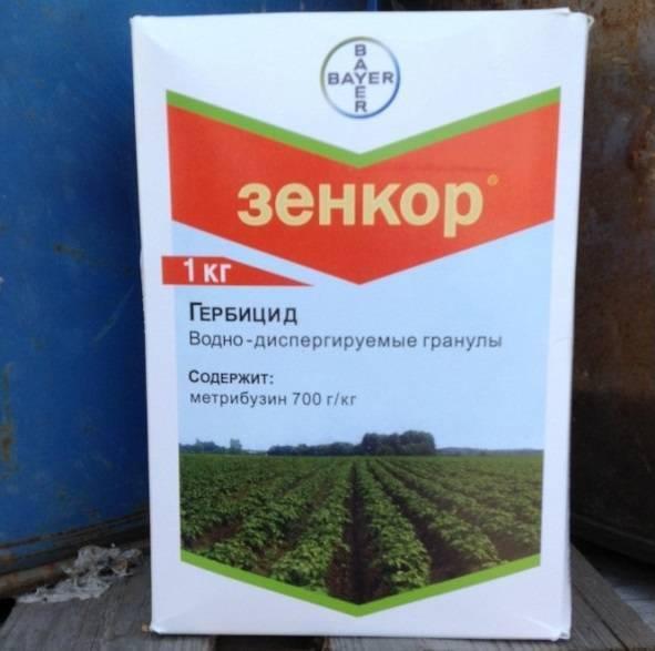 Как правильно и когда применять гербициды от сорняков для картофеля: список препаратов, отзывы