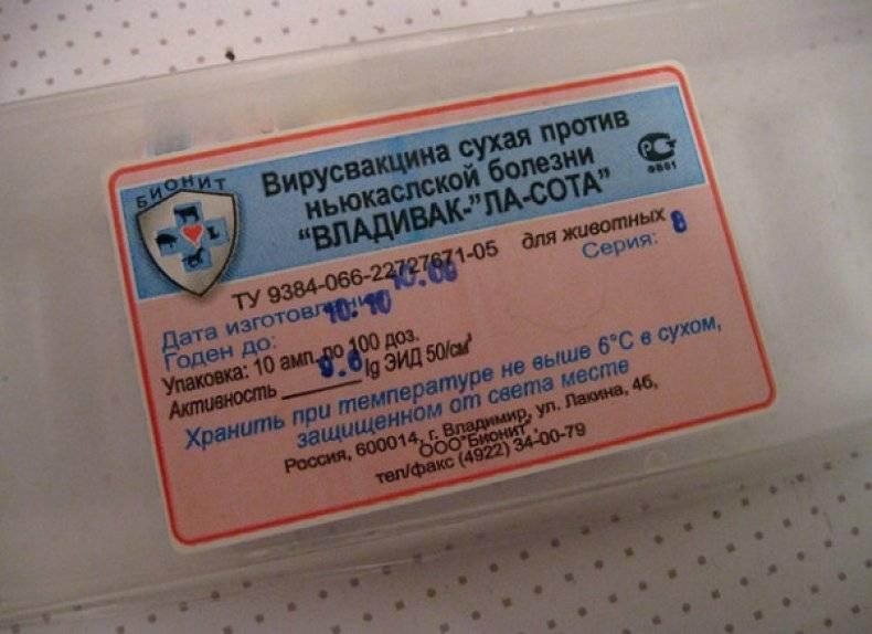 Проведение вакцинации птиц всех видов в россии