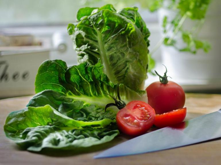 Исследование продукции растениеводства на наличие нитратов и их влияния на здоровье человека