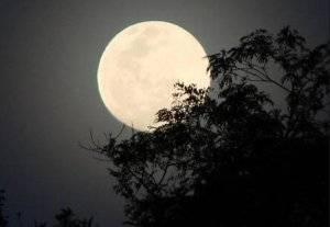 Транзитная луна в скорпионе