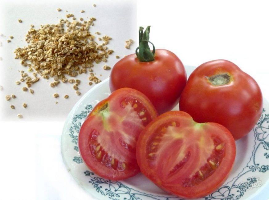 Рекомендации: как вырастить хороший урожай помидоров в теплице