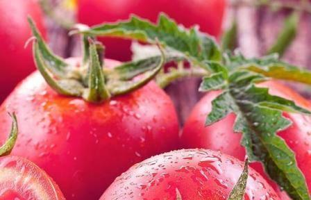 Томаты малиновое чудо: описание сорта, советы по выращиванию