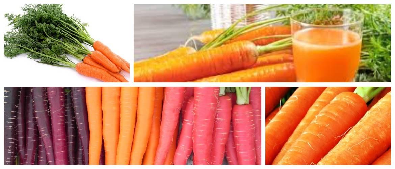 Морковь при беременности: можно ли, польза и вред — selok.info