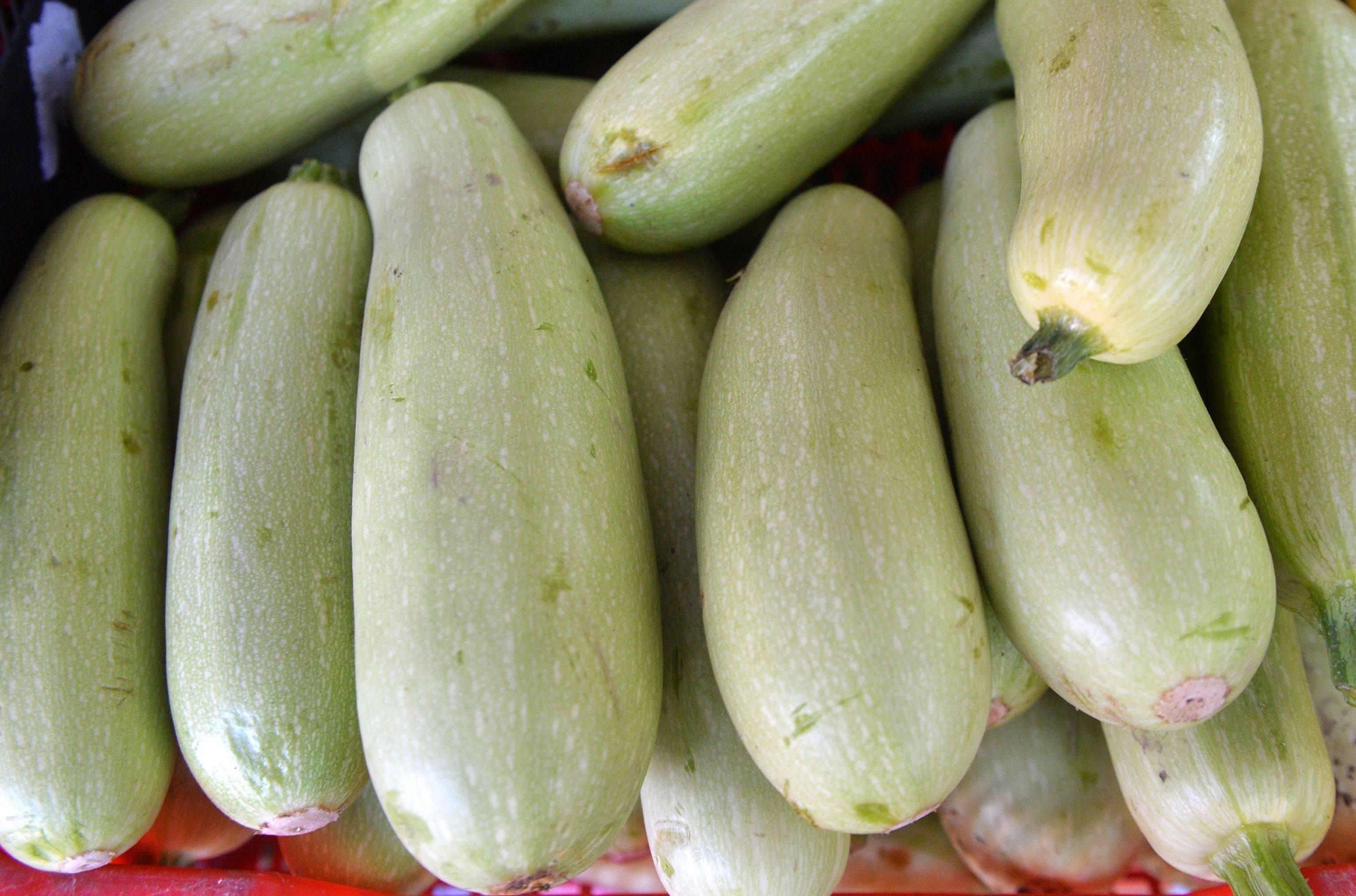 Какие витамины есть в кабачке и для чего они полезны