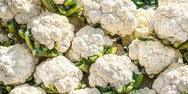Как заморозить цветную капусту на зиму: 5 полезных рецептов