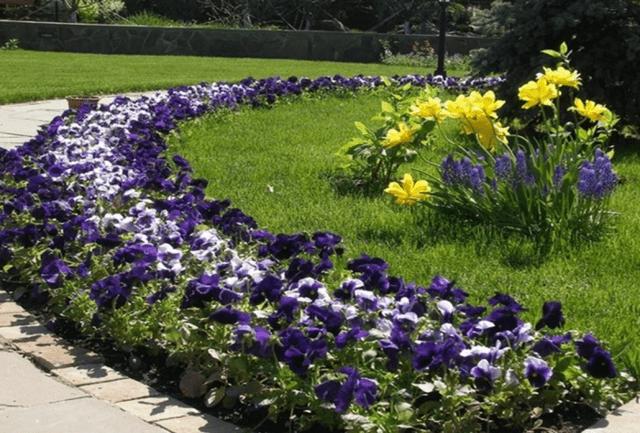 Рабатки в современном ландшафтном дизайне, варианты организации, выбор растений - 14 фото