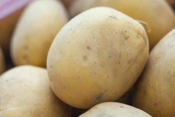 Картофель метеор: характеристика и описание сорта, фото, отзывы – сад и огород своими руками