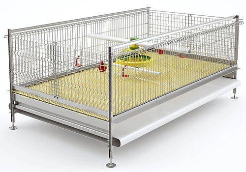 Клетка для содержания бройлеров: как собрать дом для кур и цыплят в домашних условиях