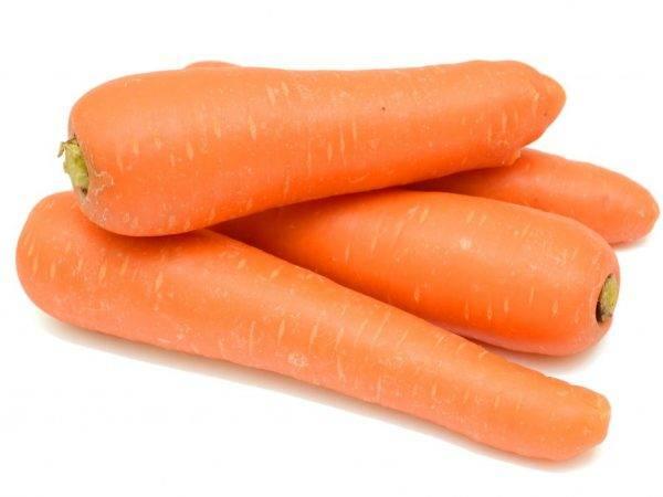 Морковь самсон: характеристика и описание с фото, отзывы, урожайность сорта