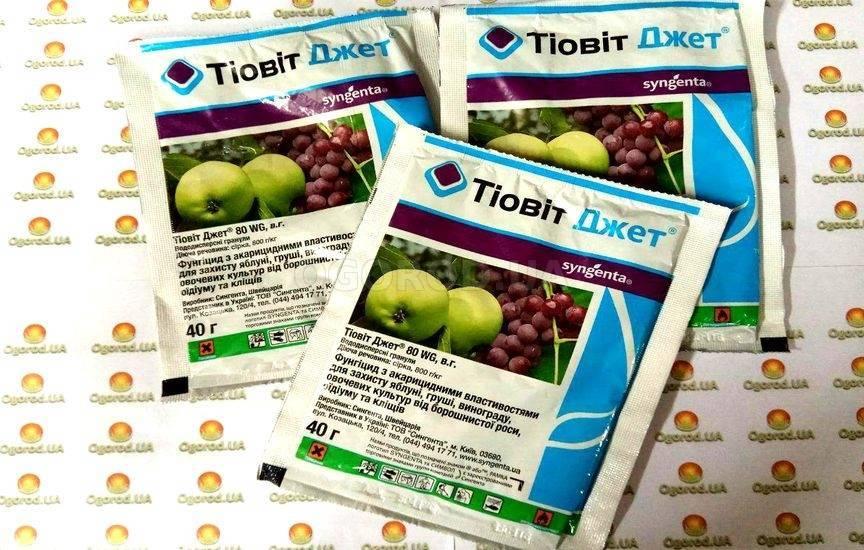 Тиовит джет для обработки винограда