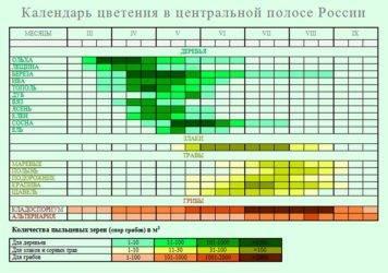 Лучшие медоносные деревья и кустарники в средней полосе евразийского континента и их основные характеристики