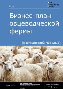 Овцеводство как бизнес для начинающего фермера в домашних условиях (выгода, видео)