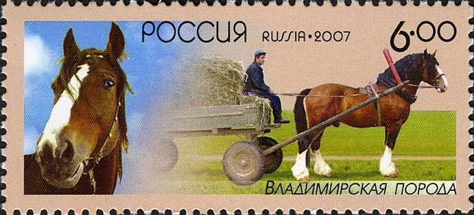 Рабочие лошадки – советский и русский тяжеловозы
