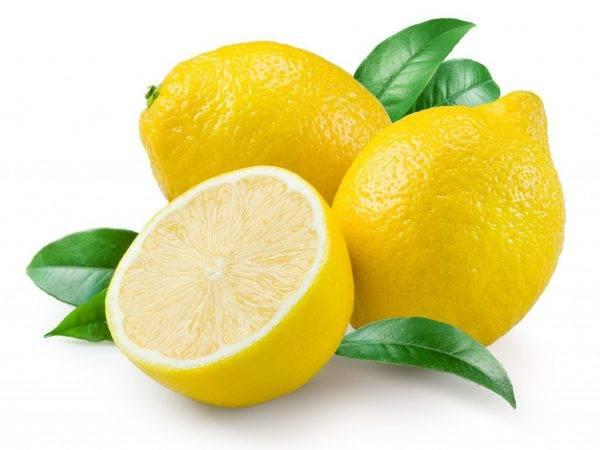 Мед от кашля: эффективные и простые рецепты   компетентно о здоровье на ilive
