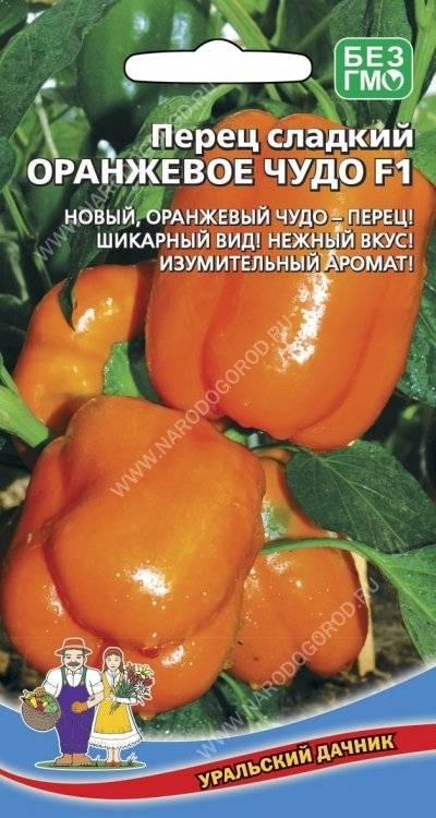 Перец «оранжевое чудо» — характеристика и описание сорта, посадка и уход, фото