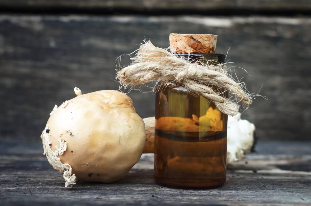 Настойка из мухомора: применение и целебные свойства, правила употребления и противопоказания