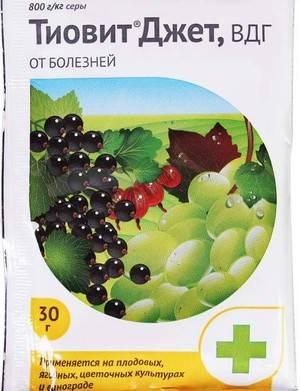 Фунгицид тиовит джет: инструкция по применению для растений, отзывы, состав, когда обрабатывать, для винограда, клубники, смородины