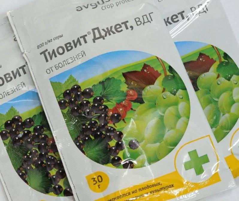 Тиовит джет — инструкция по применению для винограда