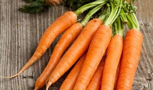 Масло семян моркови: свойства и применение, отзывы о использовании