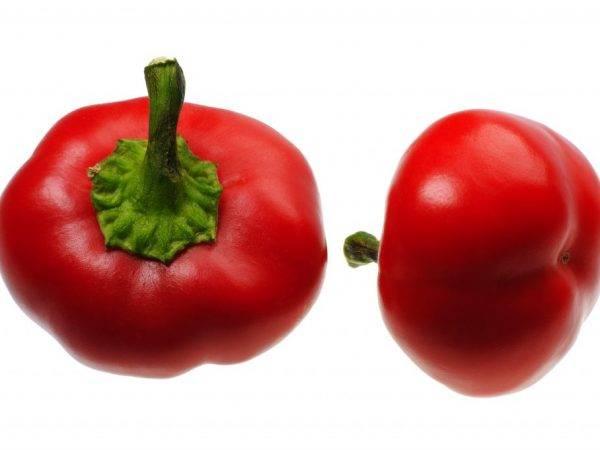 Перец «колобок»: особенности выращивания и отзывы