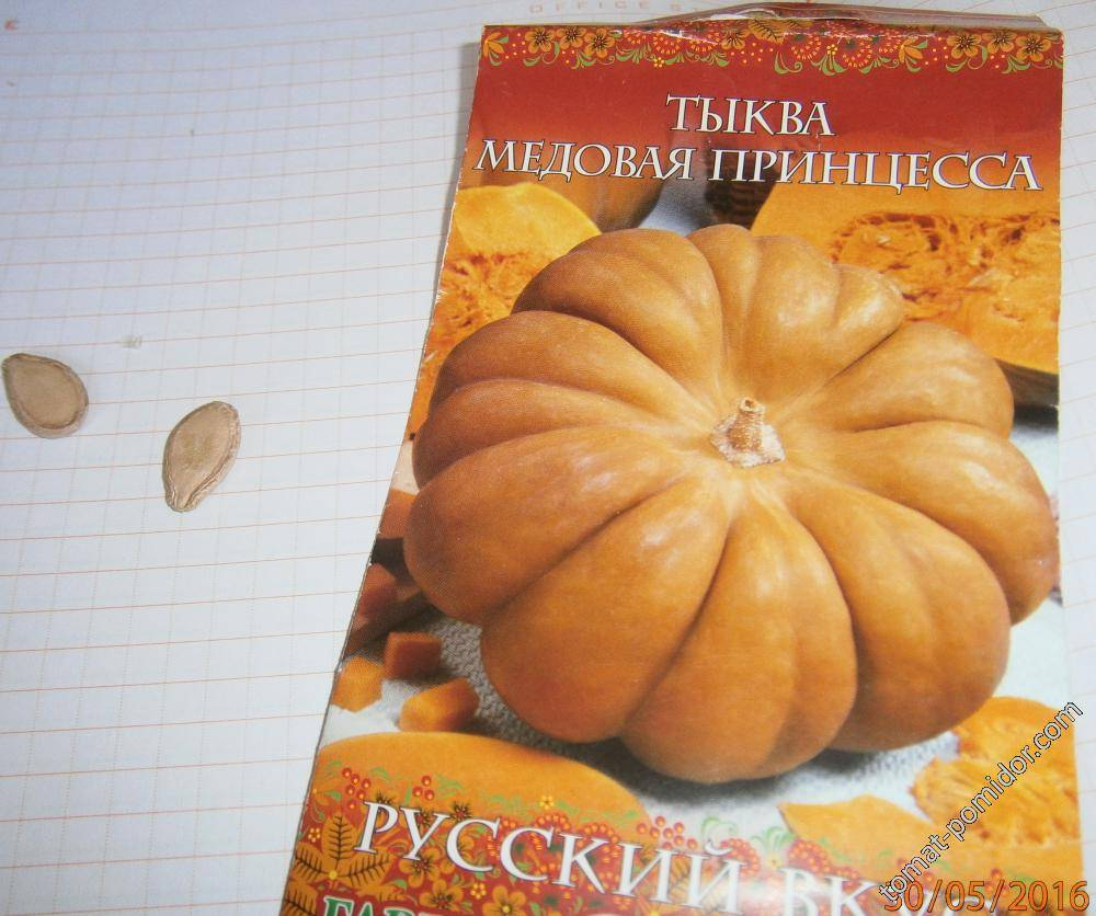 Описание тыквы сорта медовая, разновидности и особенности выращивания