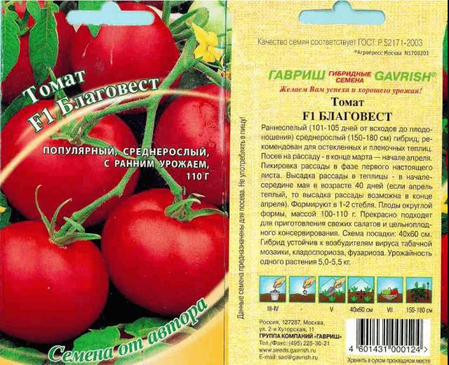 Тепличный томат Благовест — король урожайности и скороспелости