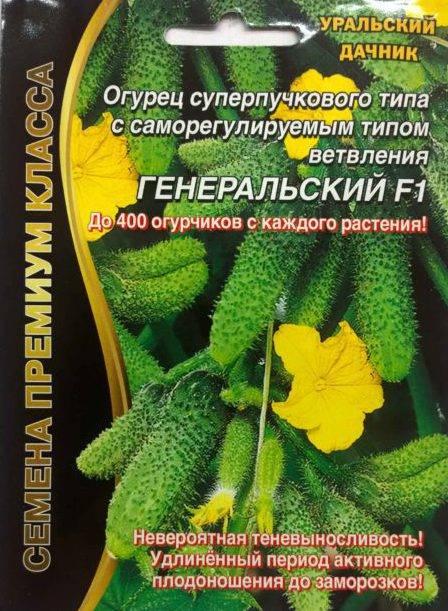 Думаете, огурцов много не бывает? тогда вы не выращивали суперпучковые гибриды