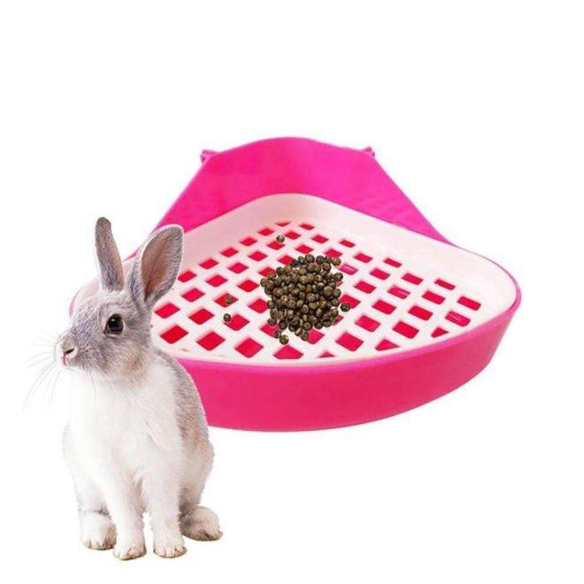 Как приучить кролика к лотку в клетке в квартире