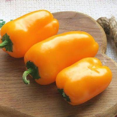 ✅ перец лисичка f1: характеристика и описание сорта, фото, урожайность, выращивание - tehnoyug.com