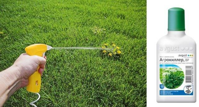 Агрокиллер от сорняков: инструкция по применению гербицида, нормы расхода