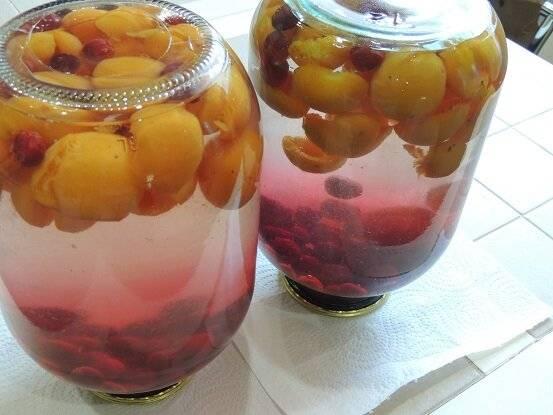 Компот из абрикосов и вишни — тонкости приготовления