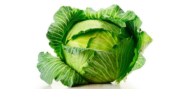 Польза капусты белокочанной — 10 доказанных свойств для здоровья организма