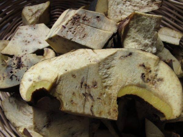 Как убрать червей из грибов, способы избавиться в разных по классификации грибах