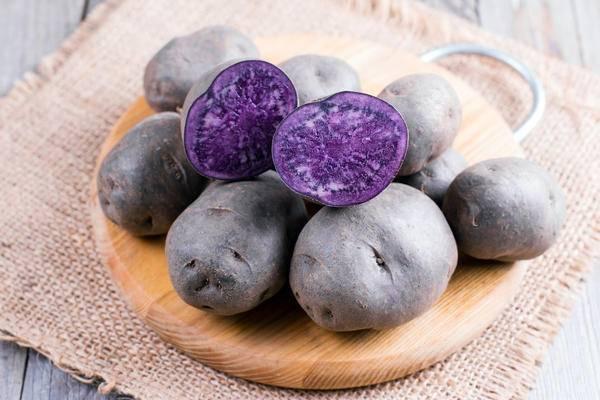 Картофель фиолетовый: описание и характеристика сорта, фото, отзывы