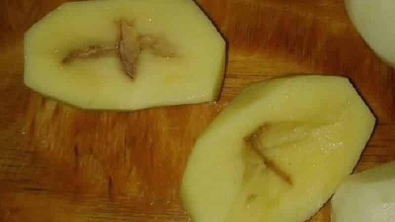 Почему картофель при хранении зеленеет и чернеет внутри, а также из-за чего прорастает, каким образом избежать болезней овоща? русский фермер