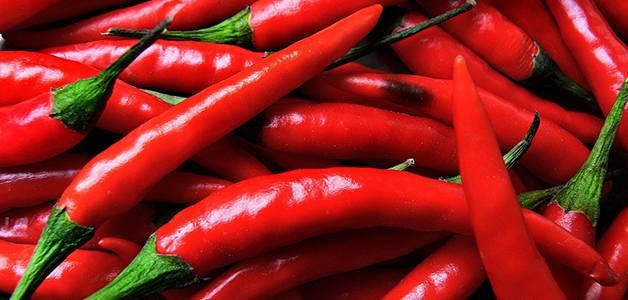 Сорта перца для теплицы: высокорослые, урожайные, новые