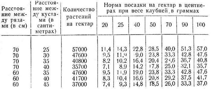Норма высева картофеля на 1 га в тоннах, сколько посадочного материала потребуется на 1 сотку, как рассчитать, сколько семенной картошки нужно для посадки