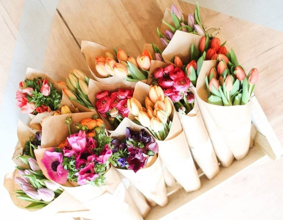 Хранение луковиц тюльпанов зимой в домашних условиях