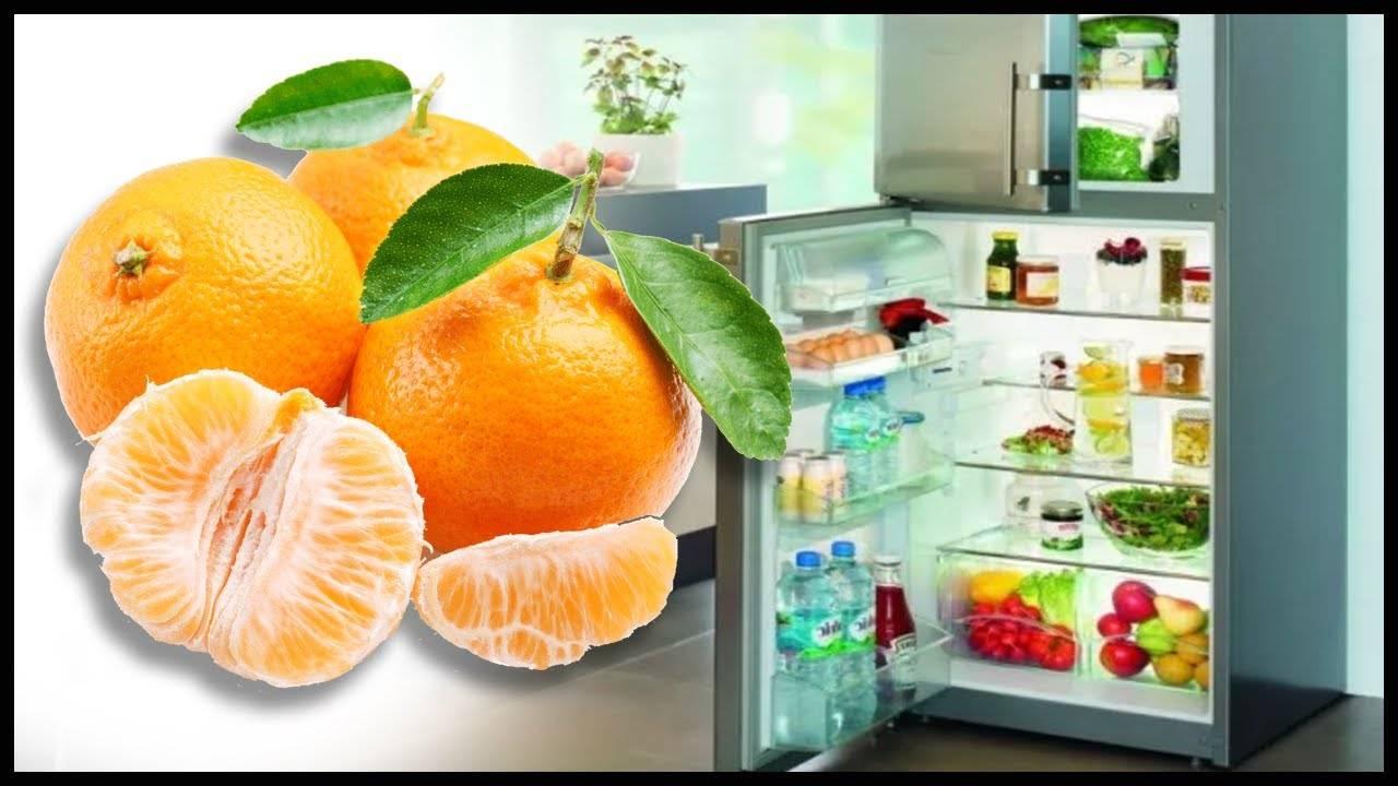Как правильно хранить мандарины и какой сорт продержится в квартире дольше?