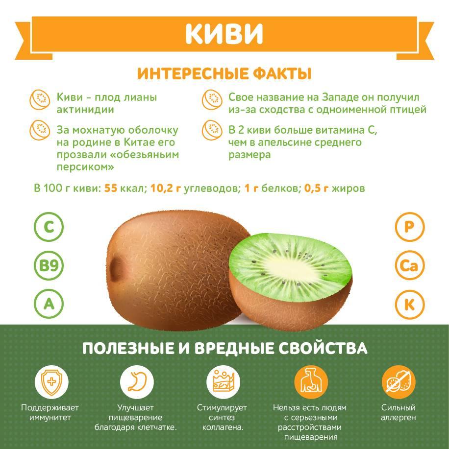 Апельсины: польза и вред для здоровья | хочу все знать – полезные и интересные статьи