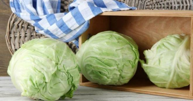 Как хранить капусту в домашних условиях советы и правила