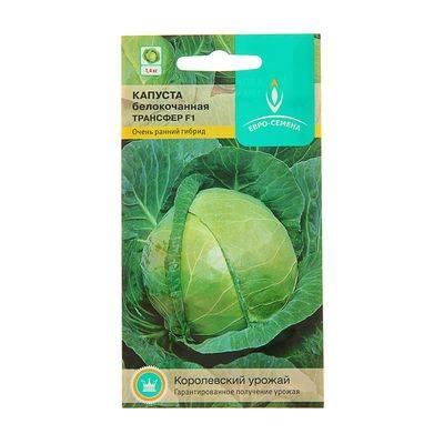 Посоветуйте хорошие сорта белокочанной капусты / асиенда.ру