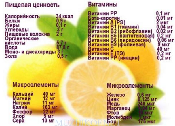 Лимон. полезные свойства. полезные вещества. кому можно. противопоказания. питательная ценность. советы.