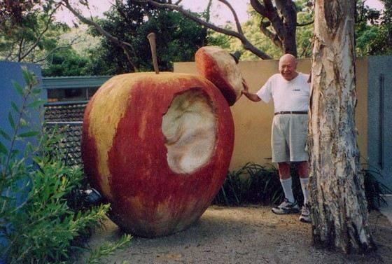 Необычные сорта яблонь, которые можно вырастить у себя на участке