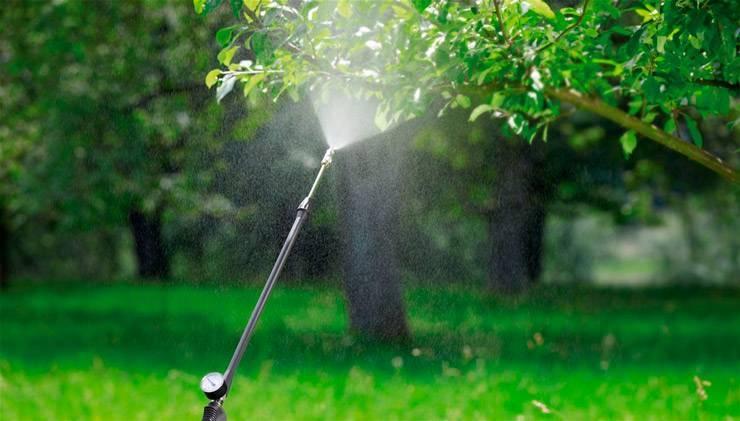 Препарат нитрафен: применение в садоводстве, аналоги